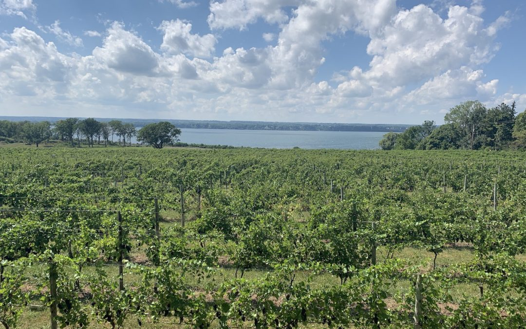 Tasting My Way Through Finger Lakes Wine Country